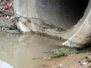 Компания, сбросившая в реку грязные стоки, оштрафована на 80 тыс. рублей