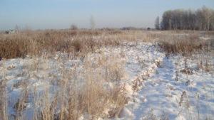 Фирму в Волоколамском районе оштрафовали на 300 тыс руб за неиспользование сельхозземли