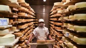 Более 30% продукции на фестивале «Мос/Еда!» представят подмосковные сыровары