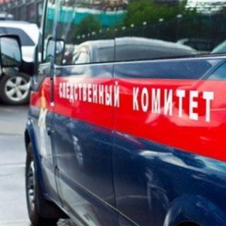 Опекуны 3-летнего мальчика подозреваются в покушении на его убийство в Подмосковье