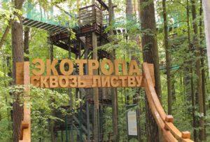 Экотропы планируется создать в особо охраняемых природных зонах в Подмосковье